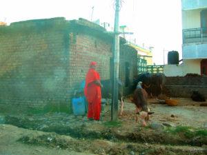 Frau und Kuh | Indien | 2009